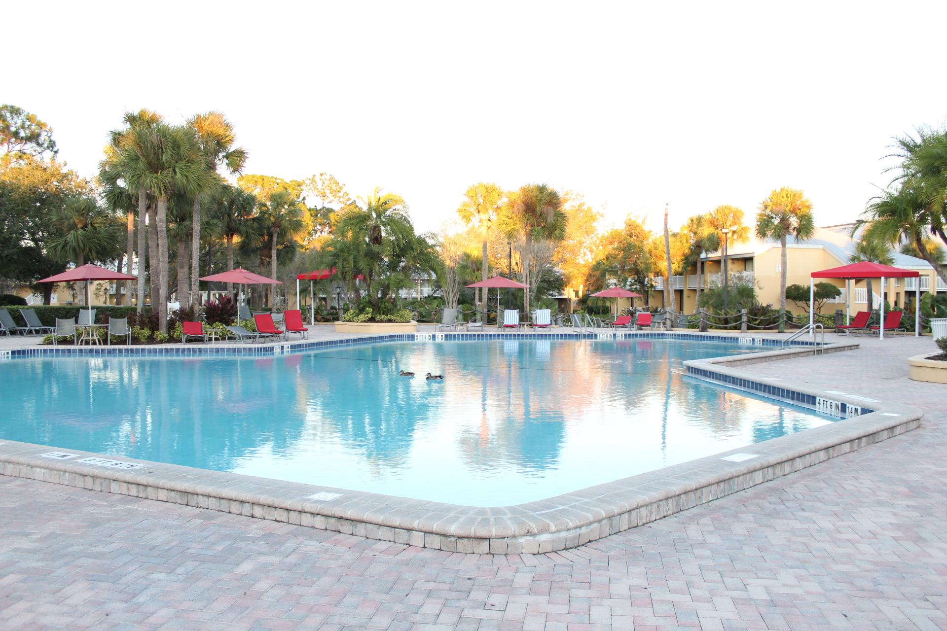 The pool at Wyndham Orlando Resort International Drive