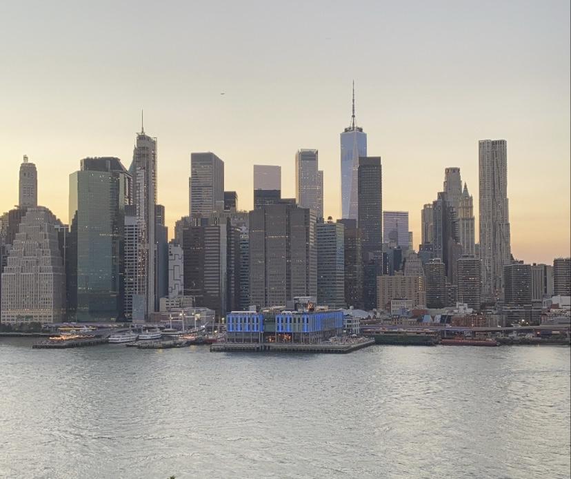 Manhattan Skyline from Harriett's Rooftop in Brooklyn